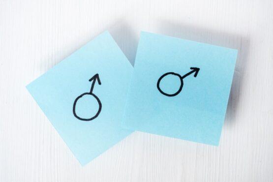 Ilustrasi pasangan sesama jenis (Freepik)
