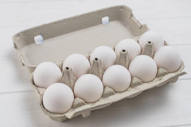 Peluang Bisnis Ternak Ayam Sembawa, 1 Ekor Bisa Hasilkan 250 Telur Per Tahun