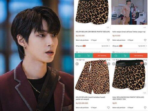 Kolor maung viral dan Hwang In Yeop pemeran Han Seojun (Twitter/ txtdarionlshop)