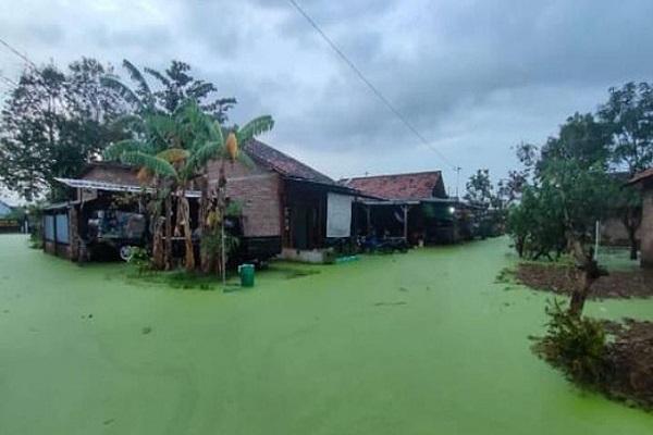 Heboh! Air Banjir di Pekalongan Warnanya Hijau, Kenapa Ya?
