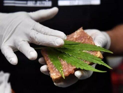 Sebelum ganja dilarang, warga Thailand menggunakan ganja sebagai bumbu penyedap makanan. (France24)