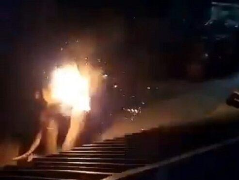 Gajah dibakar hidup- hidup (Triangel news)