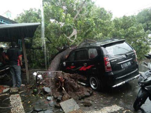 Pohon tumbang menimpa mobil di Jl Perintis Kemerdekaan dekat Pasar Kabangan, Laweyan, Solo, Rabu (27/1/2021) siang. (Istimewa)