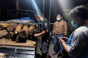 Tutupi Kayu Curian dengan Sekam Untuk Kelabui Polisi, Pembalak Liar di Ponorogo Akhirnya Terciduk Juga