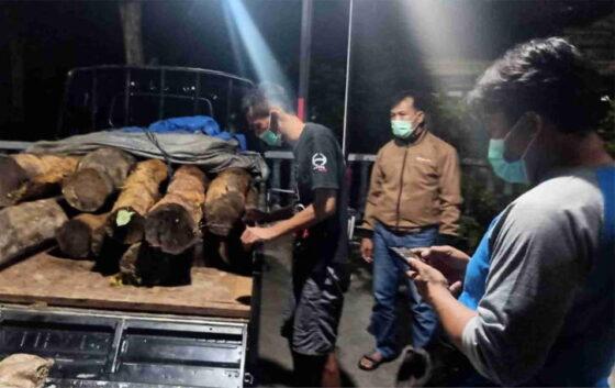Petugas menyita dua belas kayu sonokeling yang telah dicuri dari hutan Ponorogo, Minggu (7/2/2021). (Istimewa)