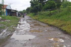 Nggak Cuma Jalan Solo-Purwodadi, 4 Jalan di Soloraya Ini juga Mirip Jeglongan Sewu