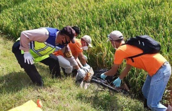 Tim Inafis Polres Grobogan dan anggota Polsek Godong mengevakuasi jenazah di sawah Desa Sumber Agung, Kecamatan Godong, Minggu (28/2/2021). (Istimewa-Polsek Godong)