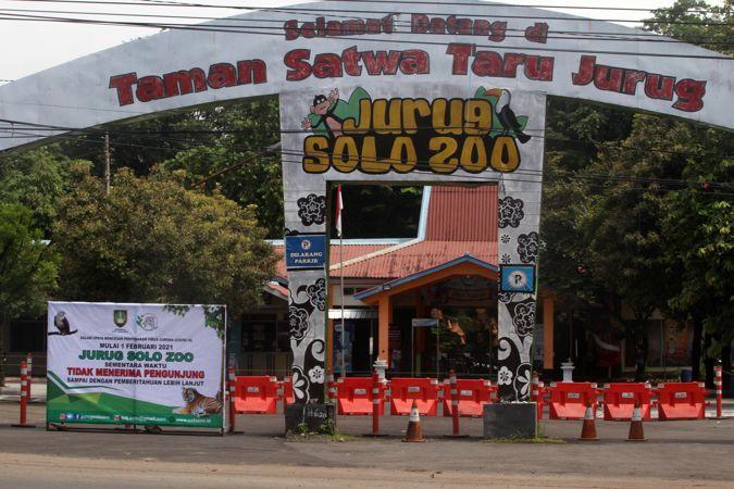 Sepi Pengunjung, Hewan di Jurug Solo Zoo Hidup Tenang