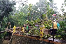 Hujan Dan Angin Kencang Sapu 5 Kecamatan di Wonogiri, Pohon Bertumbangan Timpa Rumah