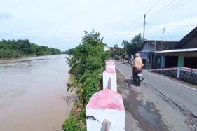 Air Sungai Bengawan Solo Hampir Meluap, Warga Pilang Sragen Santuy Jemur Kain Batik