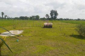 Bupati Madiun Tolak Pembangunan Pasar Muamalah