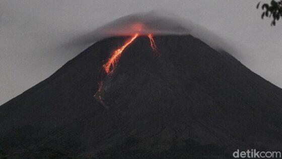 Gunung Merapi 3 Kali Gugurkan Lava Pijar Sejauh 1.400 Meter