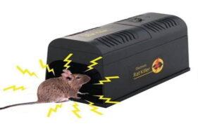 Makan Korban Jiwa di Karanganyar, Ternyata Begini Cara Kerja Jebakan Tikus Listrik