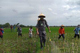 Menteri Pertanian Sebut Boyolali bisa Jadi Lokomotif Sektor Pertanian, Begini Caranya