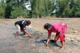 Banjir Bandang di Magetan Rusak Sawah, Kasihan Petani Merugi