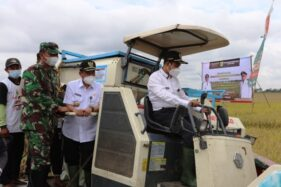 Bupati Panen Raya Padi, Ingatkan Pemalang Penyangga Pangan Jateng