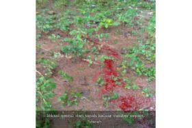 Heboh! Air Berwarna Merah Darah Muncul di Pundungrejo Sukoharjo