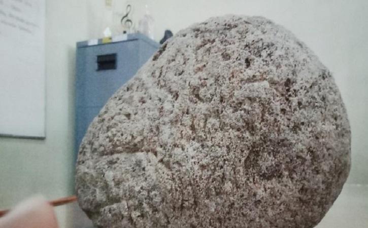 Batu Berukir Misterius Sebesar Kelapa Ditemukan di Persawahan Karanganom Klaten