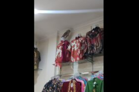 Heboh, Burung Hantu Masuk Toko Pakaian Di Sukoharjo Bikin Karyawan Ketakutan