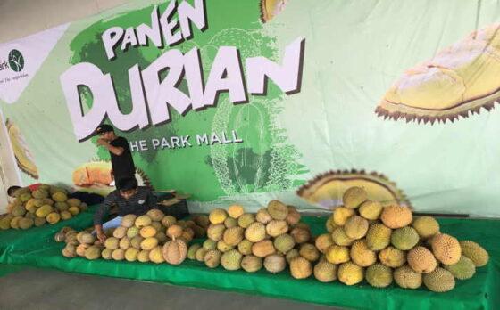 Durian berbagai jenis yang dipamerkan dalam acara Panen Durian di The Park Mall, Senin (1/3/2021).(Farida Trisnaningtyas/Solopos)