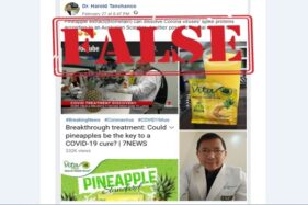 Turn Back Hoax: Ekstrak Nanas Obat Covid-19?