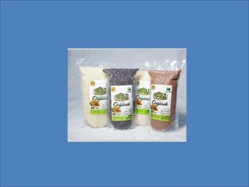 Beras organik hasil budi daya petani di Kabupaten dalam kemasan siap ekspor. (Solopos.com/Rudi Hartono)