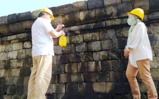 Minyak atsiri jadi bahan pengawet batu Candi Borobudur (Antara)