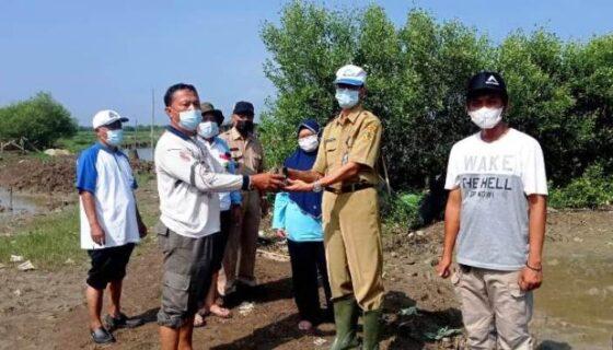 Penyerahan bantuan bibit mangrove di Kabupaten Pati. (Patikabgoid)