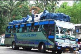 Bus-Bus Ini Layani Trayek Terjauh di Indonesia, Setara Seberangi Benua Eropa