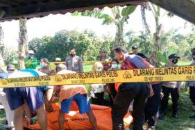 Jebakan Tikus Berlistrik Kembali Makan Korban Petani di Sukodono Sragen
