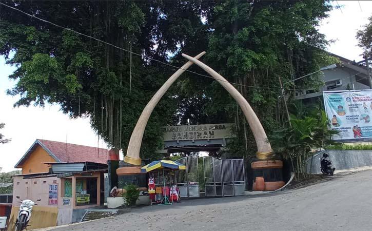 Suasana di lingkungan Museum Manusia Purba Sangiran Rabu (31/3/2021). (Solopos-Moh. Khodiq Duhri)