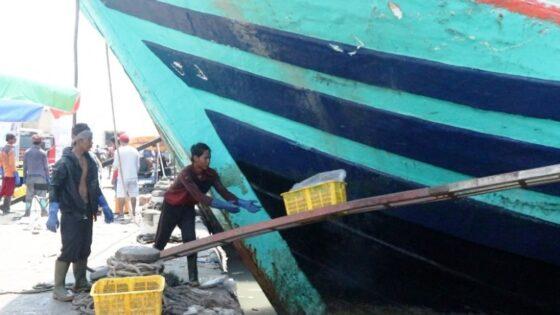 Aktivitas bongkar ikan tangkapan di Pelabuhan Tegal. (Andhika Wahyu)