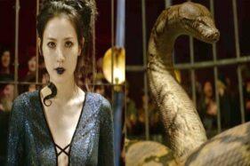 Karakter Nagini Karya J.K. Rowling Terinsipirasi Mitologi Jawa