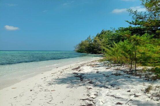 Pantai Bobi Jepara Bikin Jatuh Cinta, Kok Bisa?