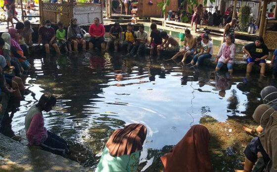 Tak Hanya Berenang, Pengunjung Umbul Manten Klaten Juga Bisa Terapi Ikan Hlo!