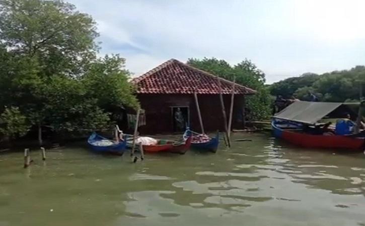 Semarang, Demak, & Pekalongan Diprediksi Tenggelam, Ini Kata Pakar Tata Kota