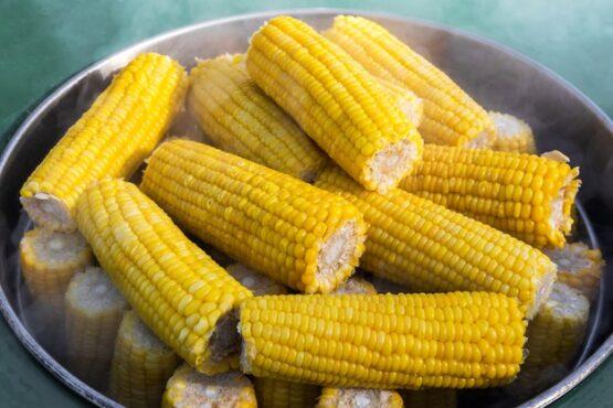 Bahan Makanan Ini Sebaiknya Direbus, Bukan Digoreng atau Dibakar