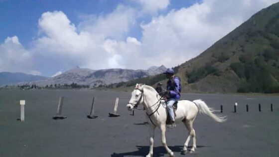 Penjual jasa naik kuda menuju kawah Bromo. (Abdul jalil/Madiunpos.com)