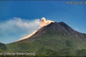 Hari Ini Awan Panas Gunung Merapi Teramati Sejauh 1,2 Km