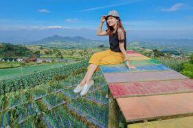 Mangli Sky View, Mutiara di Kaki Gunung Sumbing Magelang