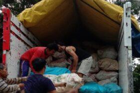 Diminati Pasar Mancanegara, 4.000 Hektar Lahan di Jateng Ditanami Porang