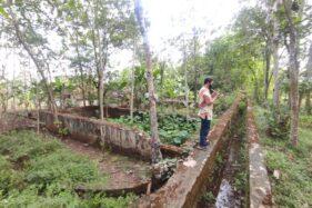 Perusahaan Serat Terbesar Hindia Belanda Ada di Wonogiri, Begini Kondisi Lokasinya Kini