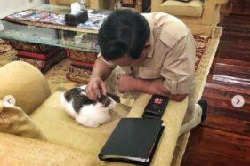 Lucu Banget! 5 Foto Bobby di Instagram, Kucing Kesayangan Prabowo