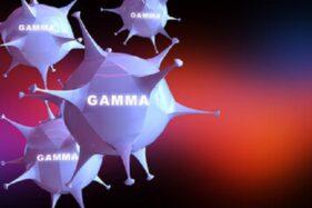 WHO Prediksi Virus Corona Varian Delta bakal Dominan