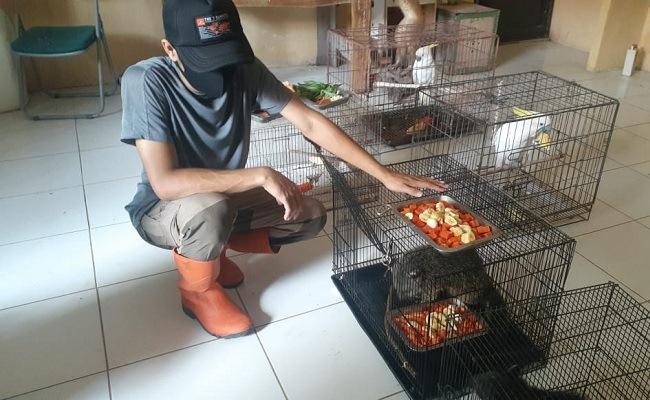 Madiun Umbul Square Tutup Saat PPKM Darurat, Pengelola Pusing Lur