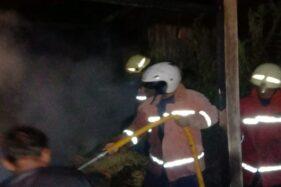 Diduga Gegara Puntung Rokok, Kandang Sapi di Sambirejo Sragen Ludes Dilahap Api