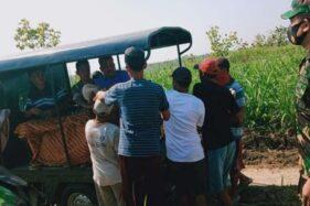 Petani Jenar Sragen Ditemukan Meninggal Tergeletak di Kebun Tebu