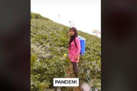 Selain Bertani, Penyanyi Dangdut Cantik Boyolali Ini Juga Seorang Youtuber