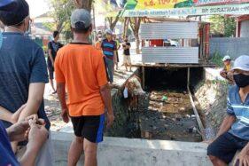 Berontak, Sapi Kurban Lepas Nyemplung Got di Jalan Solo-Tawangmangu Karanganyar