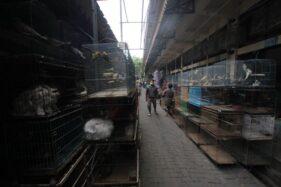 Sempat Dibebaskan Sebulan, Retribusi Pasar Tradisional di Solo Kembali Ditarik